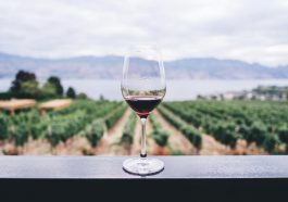 Apa itu Wine?