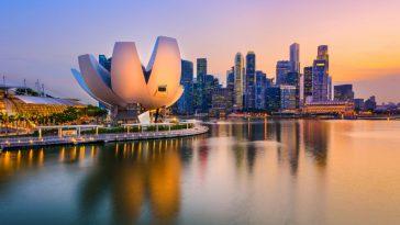 Industri Wine Singapura: Gambaran orang dalam