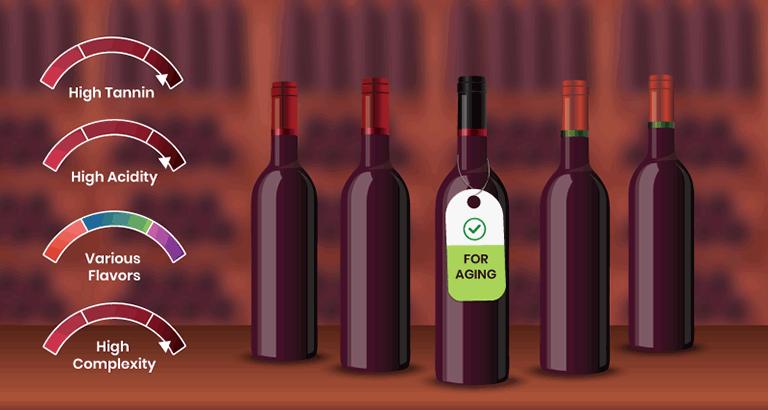 와인은 언제 그리고 왜 숙성시켜야 할까요?