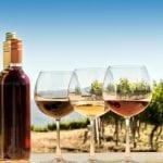 와인의 해부 - 라이트 바디, 미디엄 바디 또는 풀 바디?