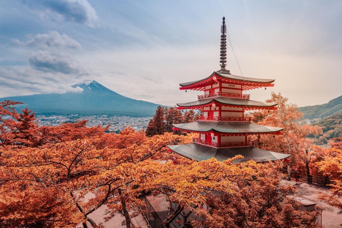 ข้อมูลวงในเกี่ยวกับตลาดไวน์ญี่ปุ่น