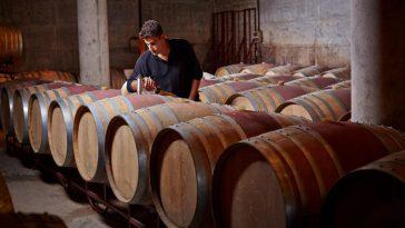 Covid-19 sẽ ảnh hưởng thế nào đến Niên vụ rượu vang 2020? - Tổng quan theo quốc gia