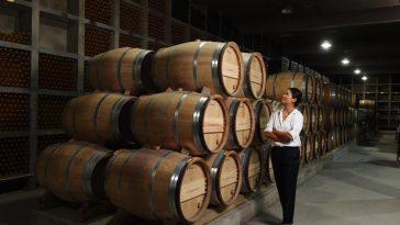 Giới thiệu 10 nhà máy rượu vang hàng đầu Trung Quốc