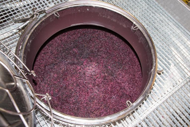 Độ cồn trong rượu vang đến từ đâu?