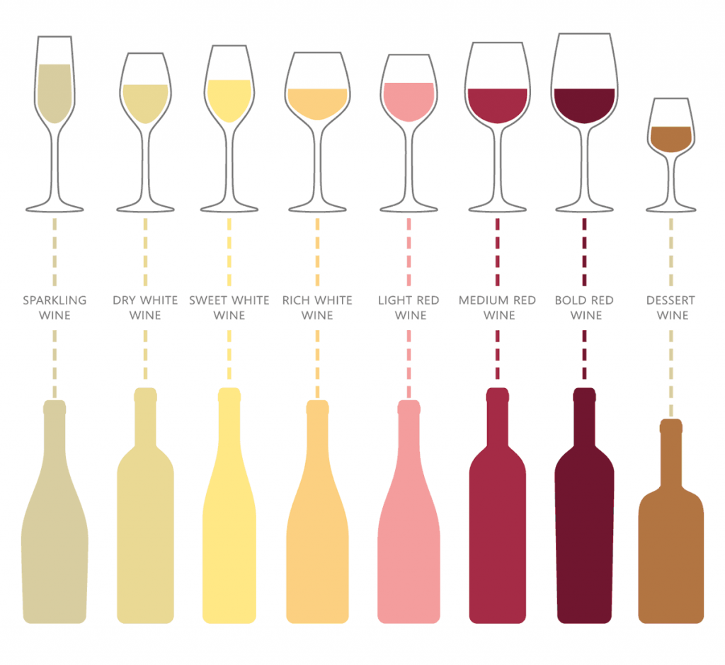 Wine Glasses Guide