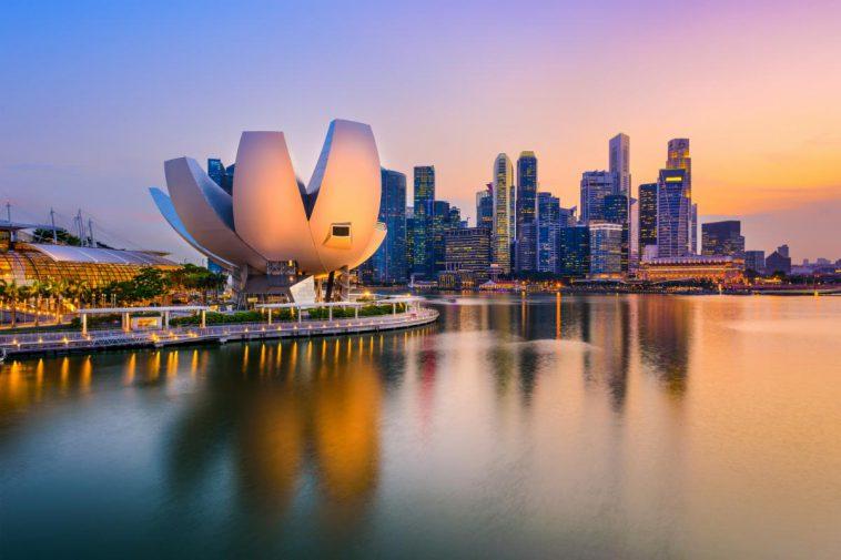 新加坡葡萄酒行业:业内看法